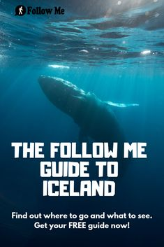 Get all the information you need to have a perfect stay in Reykjavik and Iceland. Find the best places to go, the best things to do, the best food to eat, all for FREE. Iceland Travel, Travel The World For Free, Travel Around The World, World Travel Tattoos, Holiday Iceland, Backpacking Ireland, Ireland Hotels, Ireland Weather