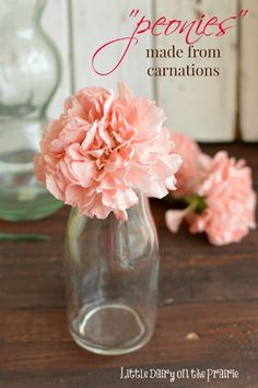 I have never been a huge fan of carnations. They are so common, and boring and cheap! Then I learned, with a simple trick, I could have peonies on my carnation budget!