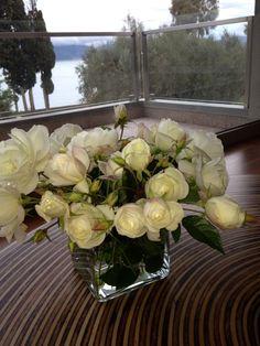 white roses!!