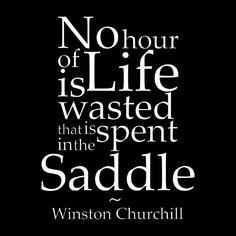 Ms. Saddleseat (@dailyhorseridin) | Twitter