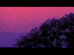 Over The Rainbow (Piano Explorations) - Jazz Music Video - BEAT100