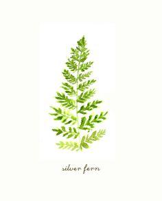 Buy 2 Get 1 Free Fern watercolor painting Silver fern by colorZen