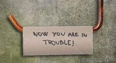 When SHTF, you have absolutely no way of knowing when you will get another chance to stock up on supplies. What if you ran out of toilet paper?