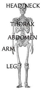 Skeleton Menu