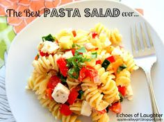 Echoes of Laughter: The Real Best Pasta Salad Ever....It's Not Gloppy, Runny, or Soggy!