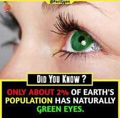 Weird Facts, Fun Facts, Interesting Facts About World, Cute Bedroom Ideas, Intresting Facts, Shocking Facts, General Knowledge Facts, Body Anatomy