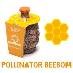 JOIN THE FIGHT TO SAVE THE BEES!Pollinator BeeBom contains a specially selected bee friendly wildflower mix of nectar rich wildflowers favoured by bumble bees and honey bees.SOAK ITTrigger your seedbom by placing it in water until soaked.THROW IT*Throw you seedbom into abandoned and derelict ground. Look for signs of soil and natural light.GROW ITGrow you seedboms where they land.March - MayAug - Oct (Autumn throwing will flower the following year)*Al...