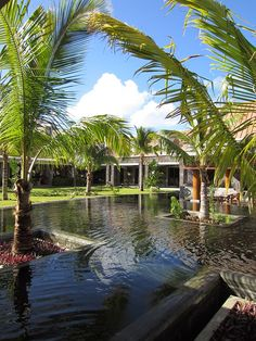 Crystals Beach Resort in Mauritius Paradise Island, Mauritius, Beach Resorts, East Coast, Coastal, Palm, Mansions, House Styles, Travel