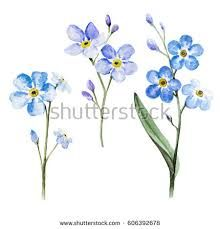 Image result for tiny forget me not tattoo