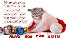 2016 Merry Christmas & Happy New Year Greeting Cards - Pouted Online Lifestyle Magazine Happy New Year Pictures, Happy New Year Quotes, Happy New Year 2016, Happy New Year Greetings, New Years 2016, New Year Greeting Cards, Quotes About New Year, Merry Christmas And Happy New Year, Best New Year Wishes