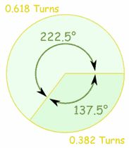 Nature, The Golden Ratio and Fibonacci Numbers