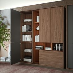SESSANTA executive office. High cabinet detail by Prof Office