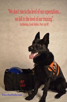 Fema Service Dogs