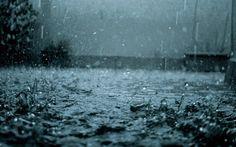 Trilhas de Luz: Chuva Amanhecida