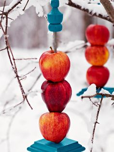 Many birds love apples, and this easy-to-make feeder will bring them in. Screw a threaded rod into a post cap. Drill holes through the apples and thread them onto the rod, then top with a finial and a screw eye. Get more info from Lowe's Creative Ideas.