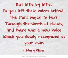But little by little, as you left their voices behind, the stars began to burn through the sheets of clouds and there was a new voice which you slowly recognized as your own. Mary Oliver - The Journey