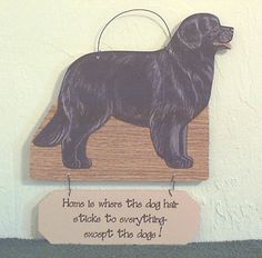 NEWFOUNDLAND DOG HAIR EVERYWHERE FUNNY DOG SIGN.
