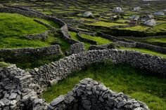 Stone Fences Ireland | ... meandering dry stacked stone walls will al ways remind me of my home