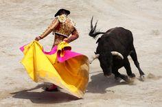 C'est dans son habit de lumière richement brodé, et dans la lumière du soleil de l'arène que le matador lutte contre le taureau. Ce combat représente la lutte de l'homme et de l'instinct animal. L'homme le remporte le plus souvent mais pas systématiquement. La corrida rejoue à chaque fois le tragique de la vie terrestre.