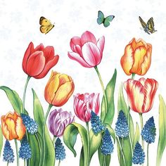 A beautiful paper napkin of colored tulips and mascari for decoupage