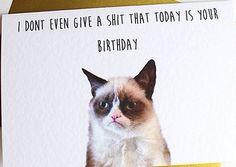 Just Sayin Sh Wa Grumpy Cat Birthday