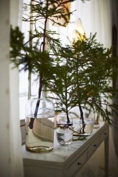 Tree branches in vases are a stylish substitute for when a tree isn't really an option.