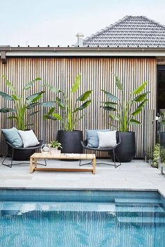 Having a pool sounds awesome especially if you are working with the best backyard pool landscaping ideas there is. How you design a proper backyard with a pool matters. Outdoor Plants, Outdoor Areas, Tropical Outdoor Decor, Outdoor Tiles, Patio Plants, Garden Plants, Modern Pools, Patio Design, Backyard Designs