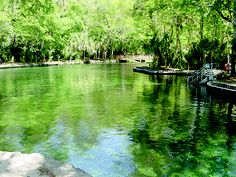 The beautiful natural pool at Wekiwa Springs State Park is crystal clear to the bottom with a special chairlift for the handicapped. Temperature is 72-degrees year round. Canoes and kayaks may also be rented to travel up the nationally designated Wild and Scenic Wekiva River.