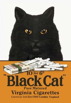 Cat in Vintage Advertisements