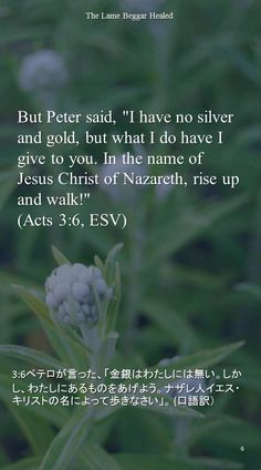 "But Peter said, ""I have no silver and gold, but what I do have I give to you. In the name ofJesus Christ of Nazareth, rise up and walk!""(Acts 3:6, ESV)3:6ペテロが言った、「金銀はわたしには無い。しかし、わたしにあるものをあげよう。ナザレ人イエス・キリストの名によって歩きなさい」。 (口語訳)"