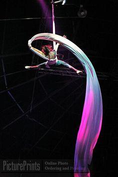 Aerial silks. I love the way the light makes the silks look multi coloured ❤️❤️