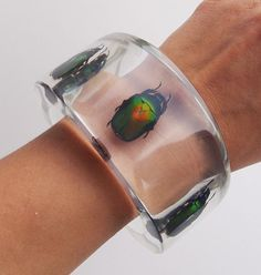 Transparent lucite bangle with three real metallic insects