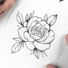 Discover recipes, home ideas, style inspiration and other ideas to try. Rose Tattoos, Flower Tattoos, Unique Tattoos, Small Tattoos, Tattoo Portfolio, Flower Sketches, Tattoo Motive, Tattoo Stencils, Floral Illustrations