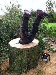 Tree Surgery Health & Safety http://treesurgeonswindon.org.uk/tree-top-blog