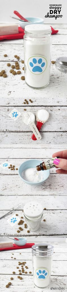 How to make a Dry Shampoo for Dogs with just 3 simple ingredients. Great to use in between dog baths!