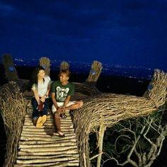 Wisata Pinus Pengger