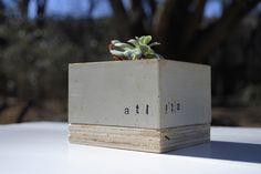 ATL Concrete Cube Planter by MDCinteriors on Etsy https://www.etsy.com/listing/105909231/atl-concrete-cube-planter