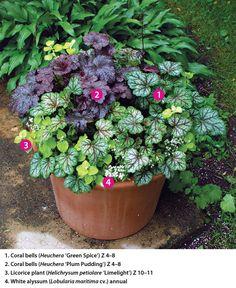 Using Perennials in Pots - Fine Gardening Article