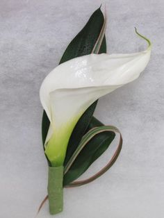 Boutonniere: Calla Lily  Oh so perfect for the groom and groomsman...gotta remember this.