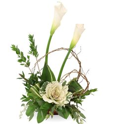 Delightful is just one of the many funeral floral arrangements available on Frazer Consultants' Tribute Store, an online flower store available on all Frazer-powered funeral home websites. Funeral Floral Arrangements, Flower Arrangements, Funeral Flowers, Wedding Flowers, Seahawks Fans, Seattle Seahawks, Home Websites, Philadelphia Eagles Fans, Funeral Tributes