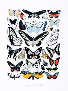 East End Prints  Butterflies Wall Art