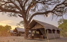 This home to some of the best Botswana safari lodges. Safari lodges spread over a vast region Luxury Tents, Luxury Camping, Luxury Travel, Chobe National Park, National Parks, Travel Companies, African Safari, Holiday Travel, Lodges