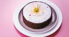 Sonnentor+Mohntorte Panna Cotta, Pudding, Ethnic Recipes, Desserts, Food, Drink, Cake Cookies, Online Shopping, Dessert Ideas