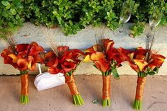 burnt orange wedding bouquets for bridesmaids Burnt Orange Weddings, Orange Wedding Flowers, Red Wedding, Wedding Ideas, Wedding Stuff, Orange Flowers, Wedding Pictures, Wedding Fun, Wedding Inspiration