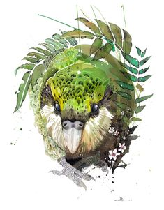 Official Rachel Walker Page. New Zealand watercolour, spray paint, pen and ink artist creating splashy celebrations of native and rare animals. Watercolor Sketch, Watercolor And Ink, Watercolor Paintings, Watercolor Trees, Watercolor Portraits, Watercolor Landscape, Abstract Paintings, Watercolours, Art Paintings