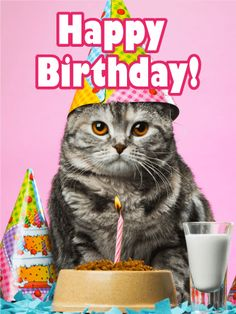 Happy Birthday Cat Kittie -Birthday Wishes For Cat Happy Birthday Wishes Happy Birthday Status, Happy Birthday Art, Happy Birthday Pictures, Happy Birthday Messages, Cat Birthday, Happy Birthday Greetings, Animal Birthday, Birthday Greeting Cards, Friend Birthday
