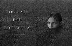 Scandinavia SSAW Magazine - TOO LATE FOR EDELWEISS Foggy Days   benjamin vnuk
