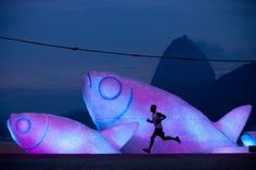 Giant fish made of plastic bottles -- lit up at night