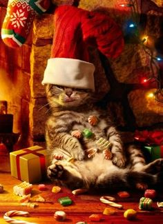 Funny Quotes About Eating Too Much At Christmas Cenksms