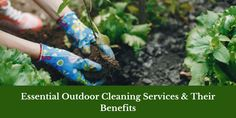 While cleaning the indoor area of your property, you should pay equal attention to its outdoor. An organised outside area of property always improves the value and adds beauty. To keep your outdoor clean, you have to consider 3 outdoor cleaning services in Thurgoona. In this blog, we are talking about 3 popular outdoor cleaning services & their benefits. House Gutters, Types Of Shapes, Benefits Of Gardening, Garden Maintenance, Pressure Washing, Cleaning Services, Eco Friendly, Landscaping, Essentials